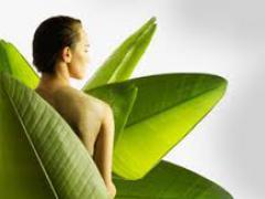 лечение миомы матки боровой маткой