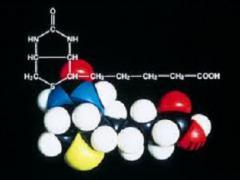 Витамин Биотин