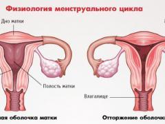 менструация 2 дня