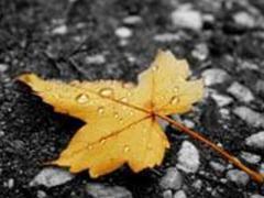 Сезонная депрессия и ее проявления