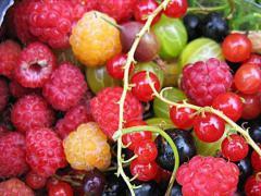 недостаток витамина Е и В2