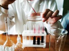анализ крови на креатинин