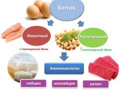 белки животного и растительного происхождения