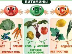 продукты, которые содержат необходимые организму витамины