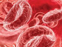 как увеличить гемоглобин в крови
