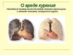 Табакокурение и его влияние на человека