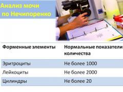 норма лейкоцитов в моче по нечипоренко