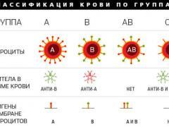 Характер по группе крови 1 положительная