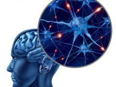 Нейродегенеративные заболевания головного мозга