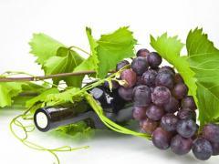 виноград черных и красных сортов