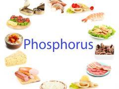 фосфор источники для человека