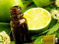 эфирное масло бергамота для профилактики простуды