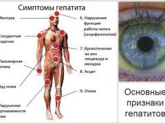 Вирусный гепатит С, пути передачи, симптомы заболевания, профилактика