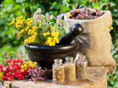 сбор трав и льняное семя