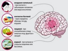 пути заражения менингитом