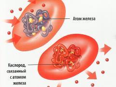 Эритроциты в крови повышены, причины явления и его возможные последствия