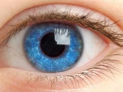 факосклероз глаз