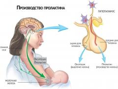 пролактин