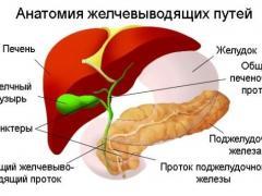 строение гепато-панкреато-билиарной системы