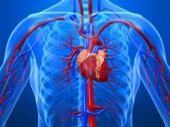 Разрыв аорты сердца