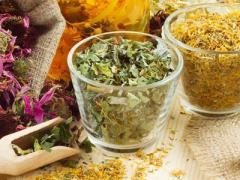 травы, народные рецепты против холестерина