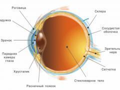что такое зрительный нерв