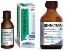 Лечение чесотки бензилбензоатом