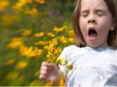 Перекрестная аллергия и ее составляющие