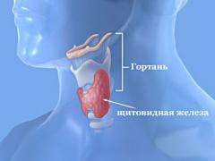 Лечение и симптомы гипотиреоза