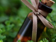 Ментоловое масло и особенности его применения
