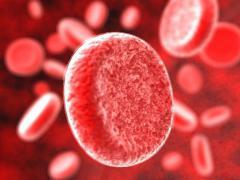 Серповидноклеточная анемия является наследственным заболеванием