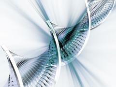 Алкаптонурия является редким генетическим заболеванием
