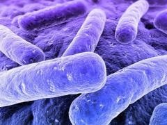 Изониазид активно борется с возбудителями туберкулеза