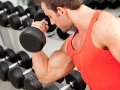 Бицепс является одной из самых популярных мышц
