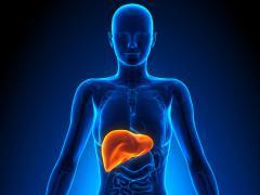 Желчный пузырь подвержен различным болезням