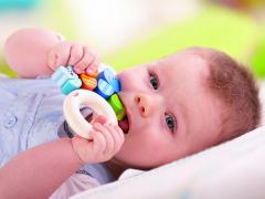 Первые прорезывающиеся зубы называются молочными