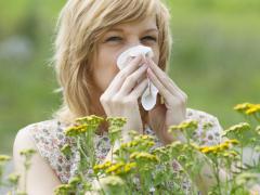 Аллергии подвержены люди, живущие в стерильных условиях