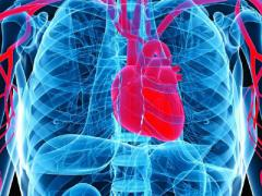 Органическая экстрасистолия представляет собой нарушение сердечного ритма