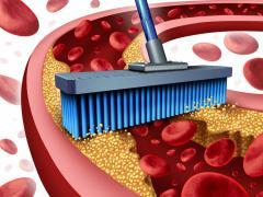 Препараты с никотиновой кислотой снижают уровень холестерина