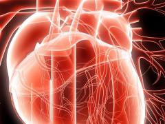 Дыхательная аритмия считается патологией сердечной мышцы