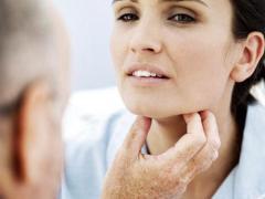 Щитовидная железа является важным органом