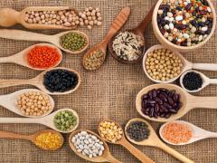 Человек нуждается в продуктах питаниях, содержащих белок