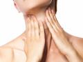 Щитовидная железа несет ответственность за обменные процессы