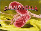 лечение сальмонеллеза у детей