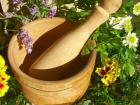 Люди с давних времен использовали травы для восстановления сил