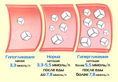 Действие глюкозы