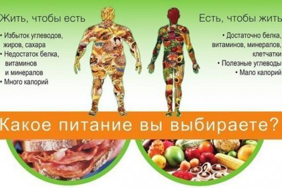 Картинки по запросу правильное питание