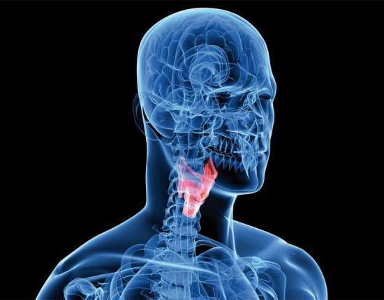 щитовидная железа и курение