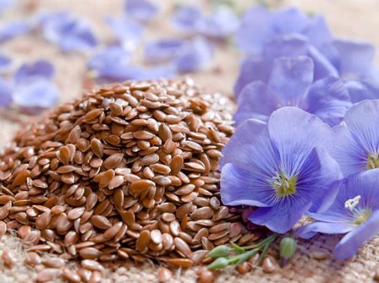 семена льна полезные свойства для женщин