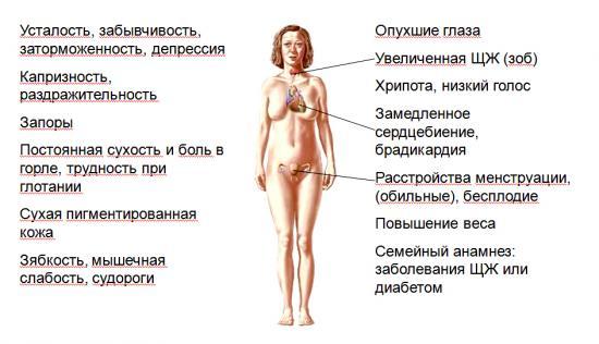 уменьшение щитовидной железы причины
